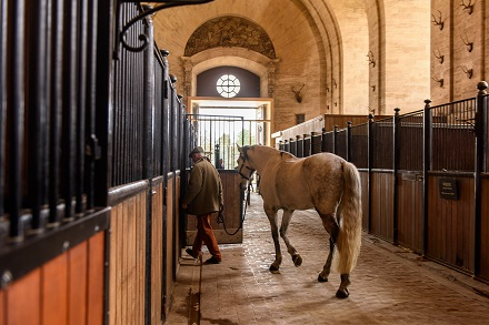 Horse Boarding Agreement