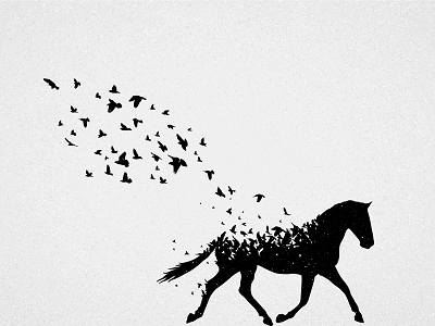 Grieving loss of a horse