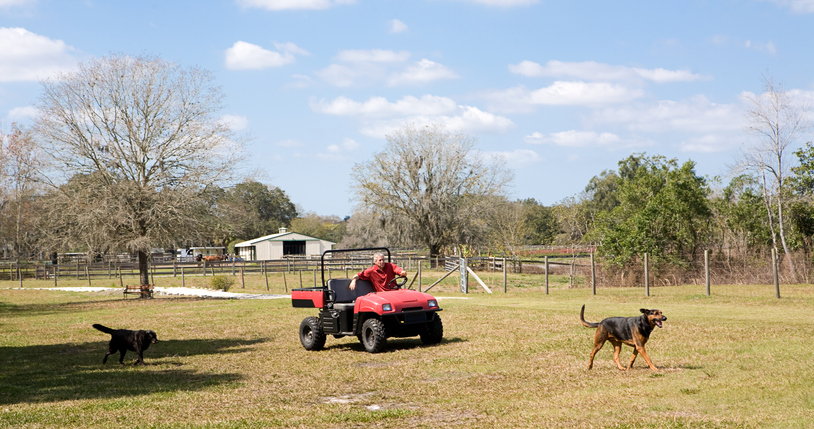 Horse Manure Management
